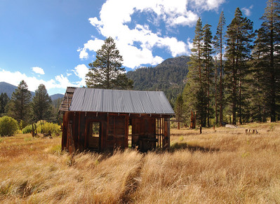 Abandoned cabin in a grassy field near Lake Tahoe, California.