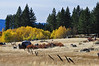 Kahle Meadow, Lake Tahoe, NV.