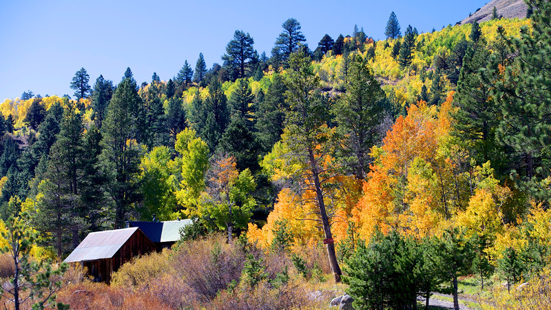 Alpine County, CA