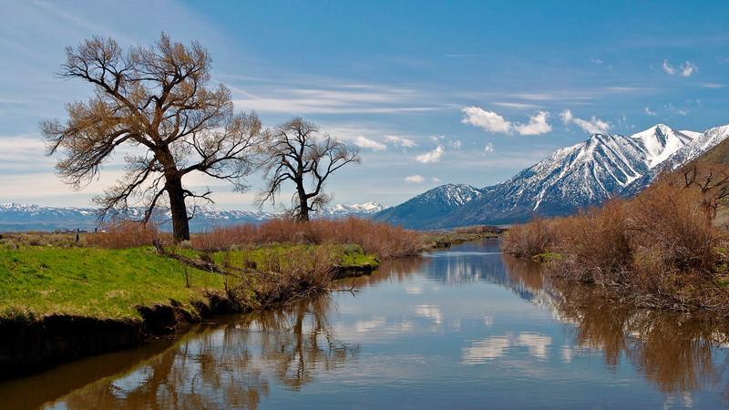 Carson River, Carson Valley, NV