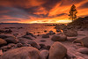 Tahoe Flames