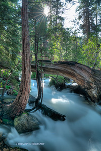Tahoe Fall Creek 2017-3