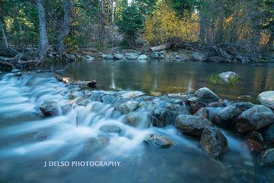 Taylor Creek Fall 2017-2