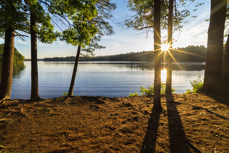 Sentinels at the Lake - Lake Whitehall - Tom Sloan