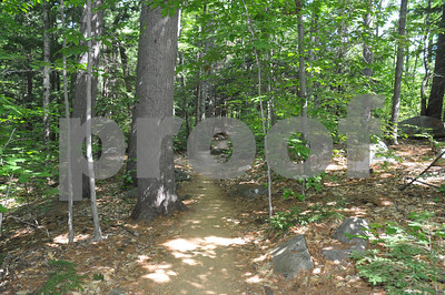 Stay on the path in New Hampshire