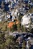 Hike to Eagle Lake, Tahoe, California