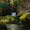 Rogue Gorge, Oregon