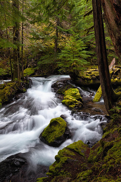 Big Creek, Washington