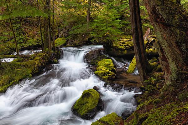 Lakes, Rivers, and Streams