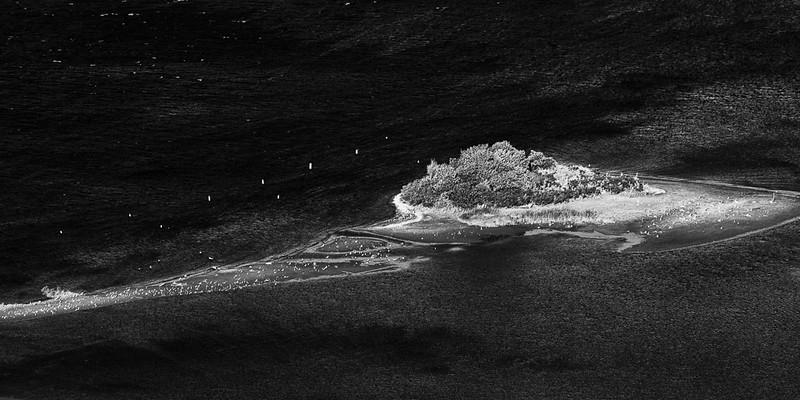Columbia River island