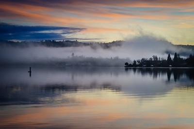The Lake Wildwood Monster