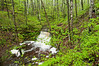 MNLR-11056: A hidden waterfall in Northern Minnesota