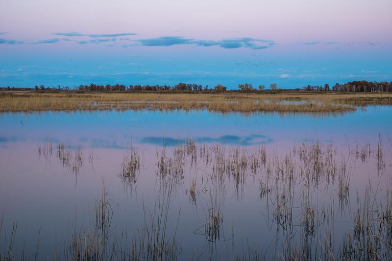 Twilight at Crex Meadows