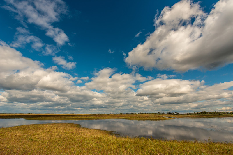 Clouds and reflections in wetland