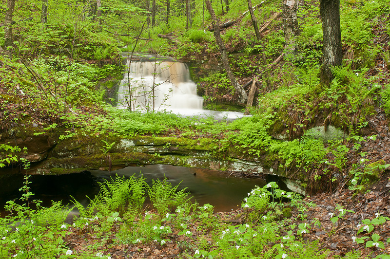MNLR-11049: Waterfall in Northern Minnesota <i>(A unnamed waterfall in Northern Minnesota)</i>