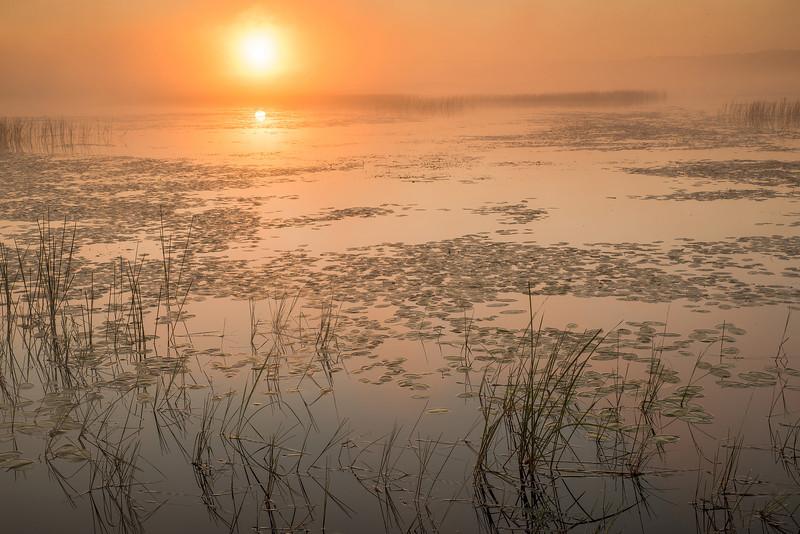 MNLR-13-125: Morning fog over Phantom Lake