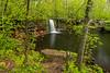 Wolf Creek Falls in spring