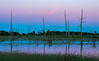 Twilight glow in wetland
