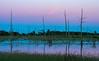 Twilight glow in wetland