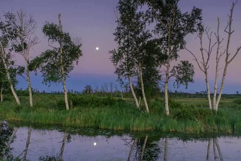 Full Moon rising at twilight