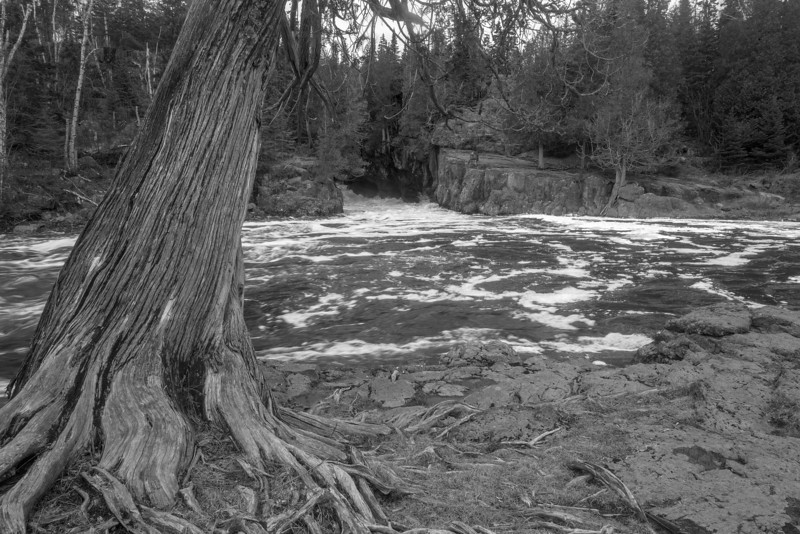 Temperance River in Black and White