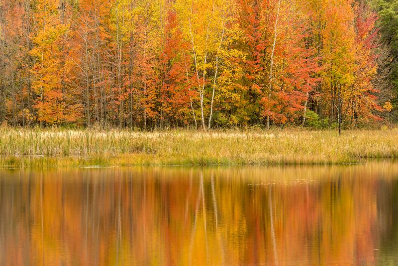 Fish Lake reflections