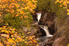 MNLR-5131 Cascade Falls: Photographed at Cascade River St. Pk. during fall color.