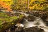 Mistletoe Creek