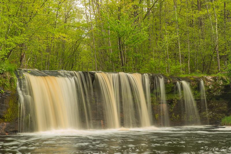 Green-up at Wolf Creek Falls