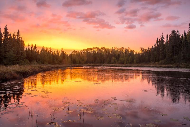 Assinika Creek at sunrise