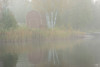 Foggy morning on Poplar lake