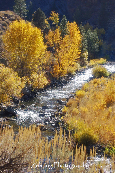 East Fork Carson River, fall, as it winds through the canyon near Markleeville, California