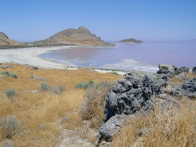 East shore of Gunnison Island in the Great Salt Lake. Looking northeast. Cub Island is visible. Photo taken by Reed Sherman, July 2006.