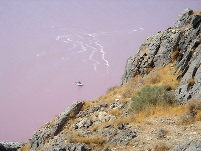 Looking down at purplish water of Great Salt Lake north arm from on top of Gunnison Island. Photo taken by Reed Sherman, July 2006.