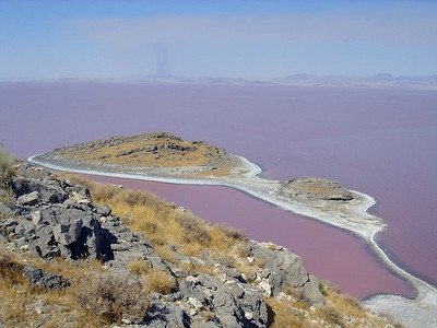 Looking at Cub Island from high point on north end of Gunnison Island in the Great Salt Lake. Photo taken by Reed Sherman, July 2006.