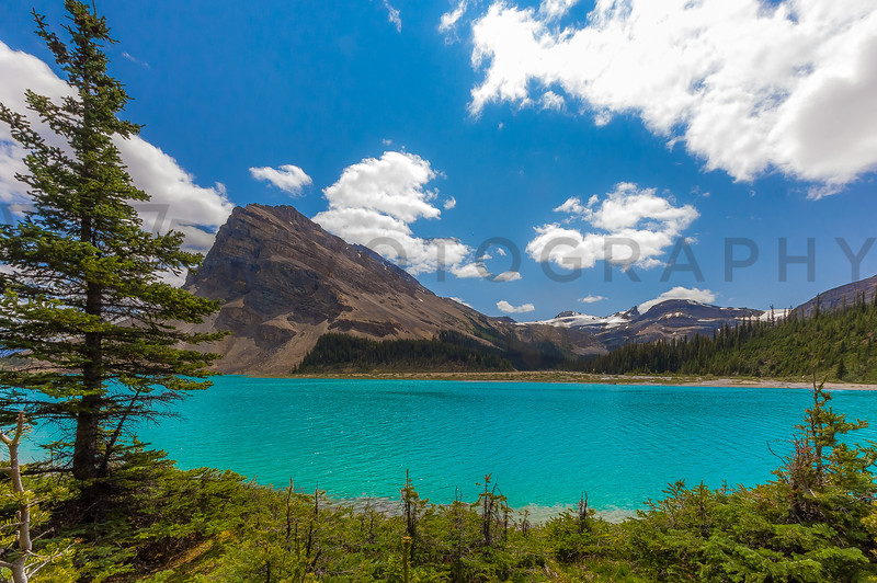 Unbelievable Colors - Bow Lake and Bow Mountain, Alberta, Canada