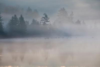 Morning Fog on Spruce Knob Lake, WV (IMG_2259)