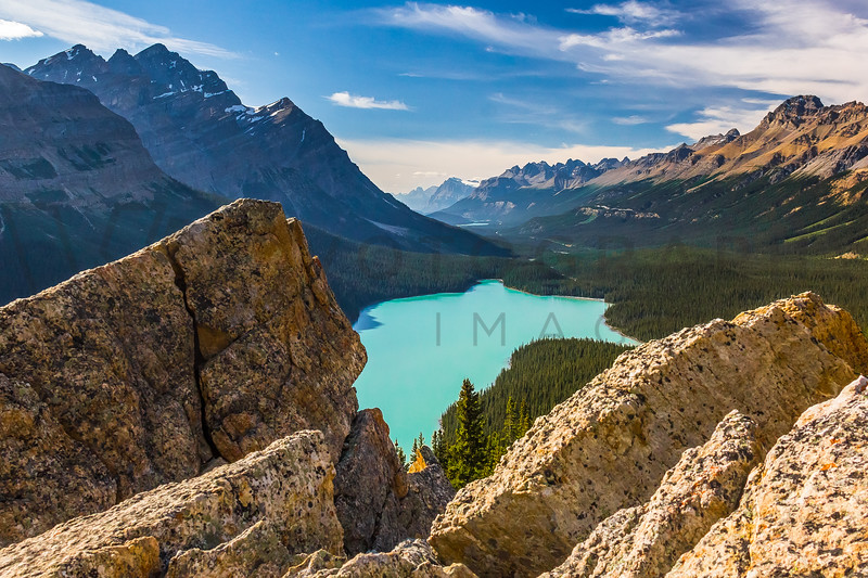 What a View; What a Place, Peyto Lake, Alberta, Canada