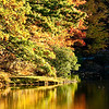 Coopers Rock Pond, WV<br /> (IMG_0009)