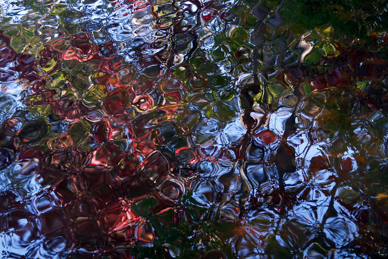 Fall Reflections - unprocessed