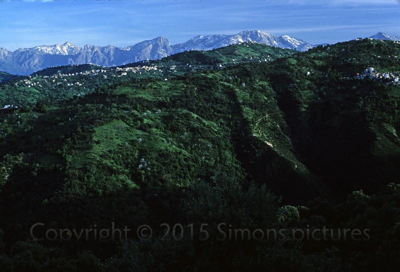 Alg_mountains2 copy