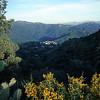 Alg_mountains4 copy