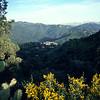 Alg_mountains4