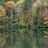 North Georgia in color season