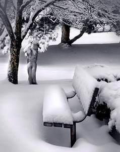 a quiet snow scene with a bench and statue