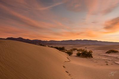 Dunes Glow Sunrise