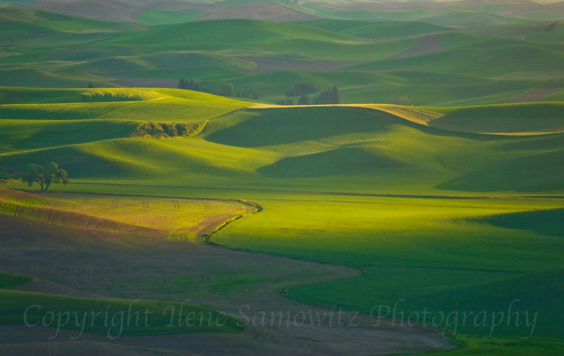 Palouse Storm Light, Washinton