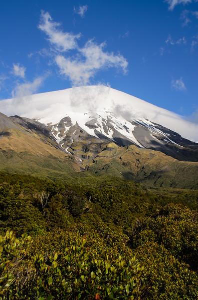 Mount Taranaki, Egmont National Park.<br /> North Island, New Zealand