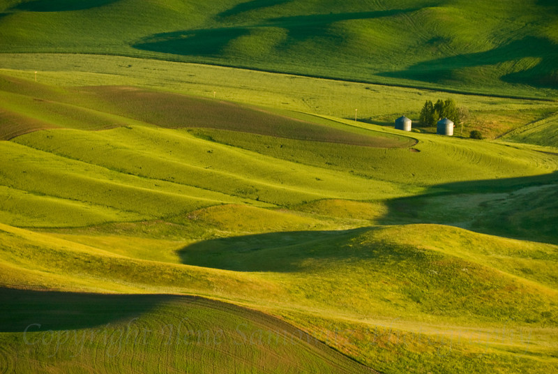 Palouse Landforms, Washington