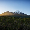 Mount Taranaki, Egmont National Park.<br /> North Island, New Zealand